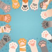 Cats Paw Background. Funny Domestic Kitten Pets Or Wild Animals Different Paws With Claws Vector Ill poster