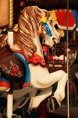 Merry-Go-Round Horses