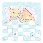 Wenskaart voor geliefde met schattige slapende katten.