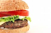 Cheeseburger W Sauce Half poster