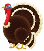 picture of unawares  - An illustration depicting a plump thanksgiving turkey standing - JPG