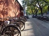 Beijing China - Bicycles In Beijing