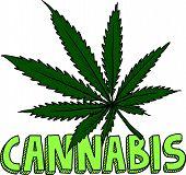 Cannabis marijuana sketch