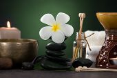 Tropical Frangipani Spa Health Treatment With Aroma Therapy And Hot Stones