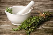 Rosemery Herbs And Pestle