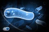 Digital illustration of  bacteria in 3d on digital background