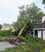 Leeuwarden, Netherlands, Oktober 28, 2013: Massive Storm Hit The North Of The Netherlands, Total Dam