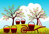 image of hand-barrow  - vector hand barrow and baskets of cherries in cherry orchard - JPG