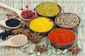 Selection of Indian spices on bamboo mat