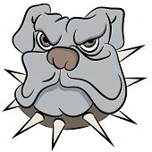 An image of a bull dog face.