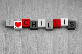 I Love Chillis - Sign Series For Food And Hot Chilli Ingredients!