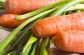 Carrots And Spring Onion