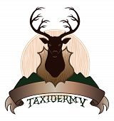 Taxidermy Design With Banner