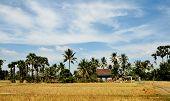Rural scene in Siem Reap, Cambodia