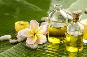 Health spa with massage oil and , frangipani ,candle on leaf