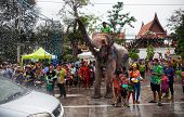 Elephants Spray Water In Celebration Of The Songkran Water Festival.