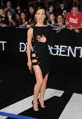 LOS ANGELES - MAR 18:  Maggie Q arrives to the 'Divergent' Los Angeles Premiere  on March 18, 2014 i