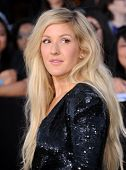 LOS ANGELES - MAR 18:  Elle Goulding arrives to the 'Divergent' Los Angeles Premiere  on March 18, 2014 in Westwood, CA
