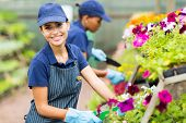 pretty female florist working in nursery