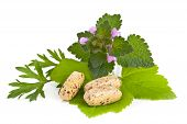 Herbal Vitamin And Supplement Pills With Herbs