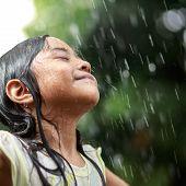 Sumer Rain