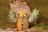 Carved eagle owl from pineapple in the forest, Landscape