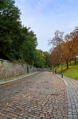 Stone road in the Vysehrad of Prague