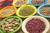 stock photo of pinto bean  - variety of legumes  - JPG