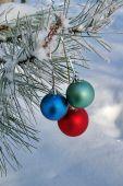 Three Colour Balls On A Pine