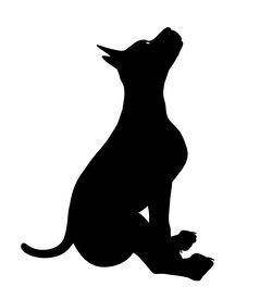 stock photo of coxcomb  - Black puppy dog art illustration silhouette on a white background - JPG