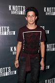 LOS ANGELES - OCT 3:  Aramis Knight at the Knott's Scary Farm Celebrity VIP Opening  at Knott's Berry Farm on October 3, 2014 in Buena Park, CA