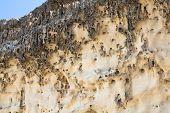 Eroding Cliffs, Fuerteventura