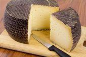 Spanish Manchego Cheese