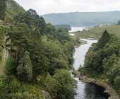 Landscape Image Looking Down To River Flowing Through Forest In Summer