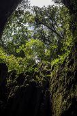 Cave, Borneo