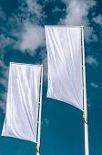 Cleared Flags