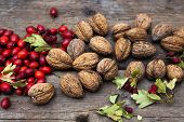 Autumn harvest - walnuts, rosehip and hawthorn