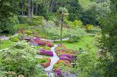 Enniskerry, Ireland - May 11, 2014: Japanese Garden At Powerscourt State In Sniskerry, Ireland