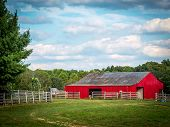 Red Barn in Summer