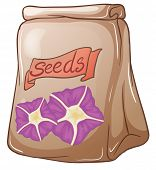 Illustration of a pack of flower seeds on a white background