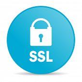 ssl internet icon