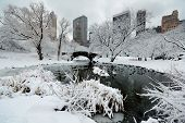 image of skyscrapers  - Central Park winter with skyscrapers and bridge in midtown Manhattan New York City - JPG