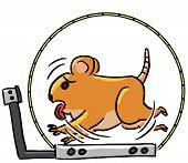 cartoon animal emotion hamster run