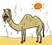 cartoon animal emotion camel hot