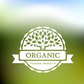 Organic Product Badge With Tree On Blurred Landscape. Vector Illustration Background