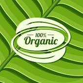 Organic Product Badge On Green Leaf Texture. Vector Illustration Background