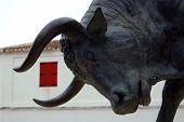 National Festival Of The Bulls In Spain
