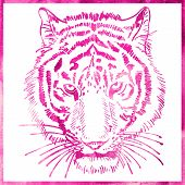 head of tiger is in a watercolor artwork in pink color, portrait