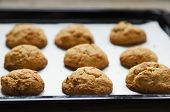 picture of baked raisin cookies  - hot fresh oatmeal cookies on baking paper - JPG