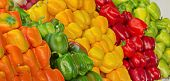 Israel Market Produce: Colorful Fresh Bell Peppers